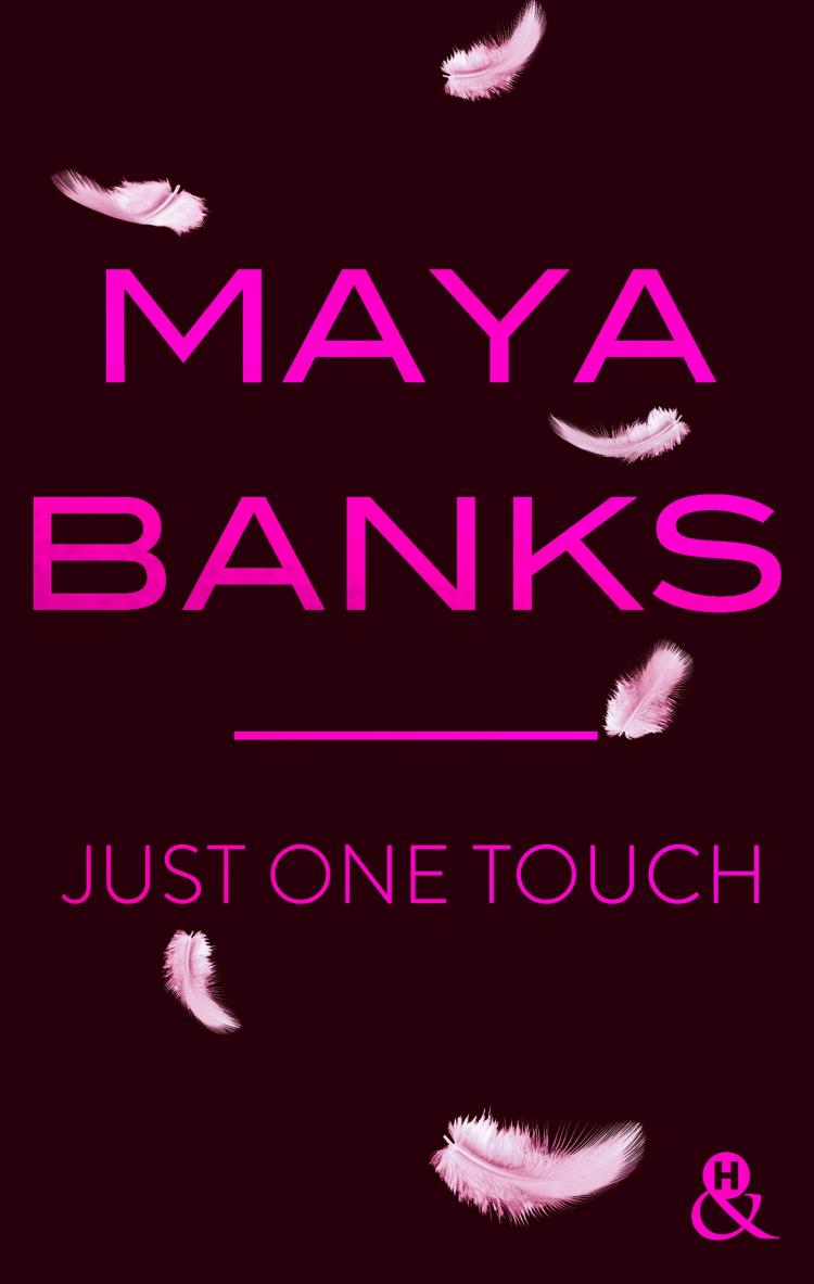 maya?tid=ea4908b1828be2c576e8fed51b7e048d - Slow Burn - Tome 5 : Just one touch de Maya Banks 9782280387507